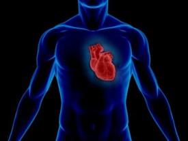 Penyakit Kardiomiopati